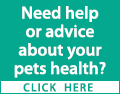 Need help or advice about your pets health? Considering buying a pet and want some friendly advice? Contact a local veterinary practice today.